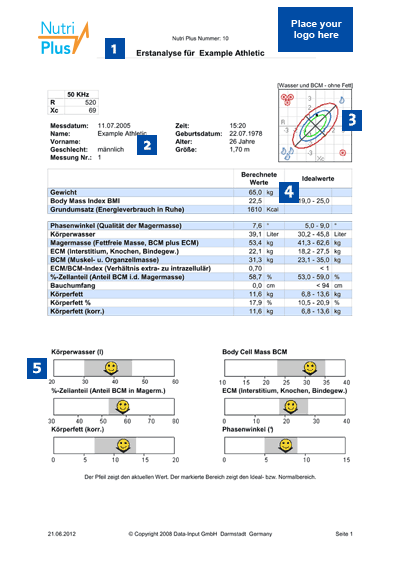 Printed Example of an initial analysis